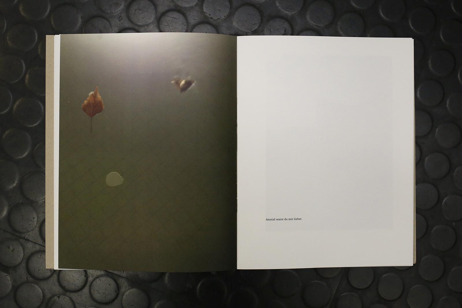 Es regnet Voegel – Stephanie Neumann 7