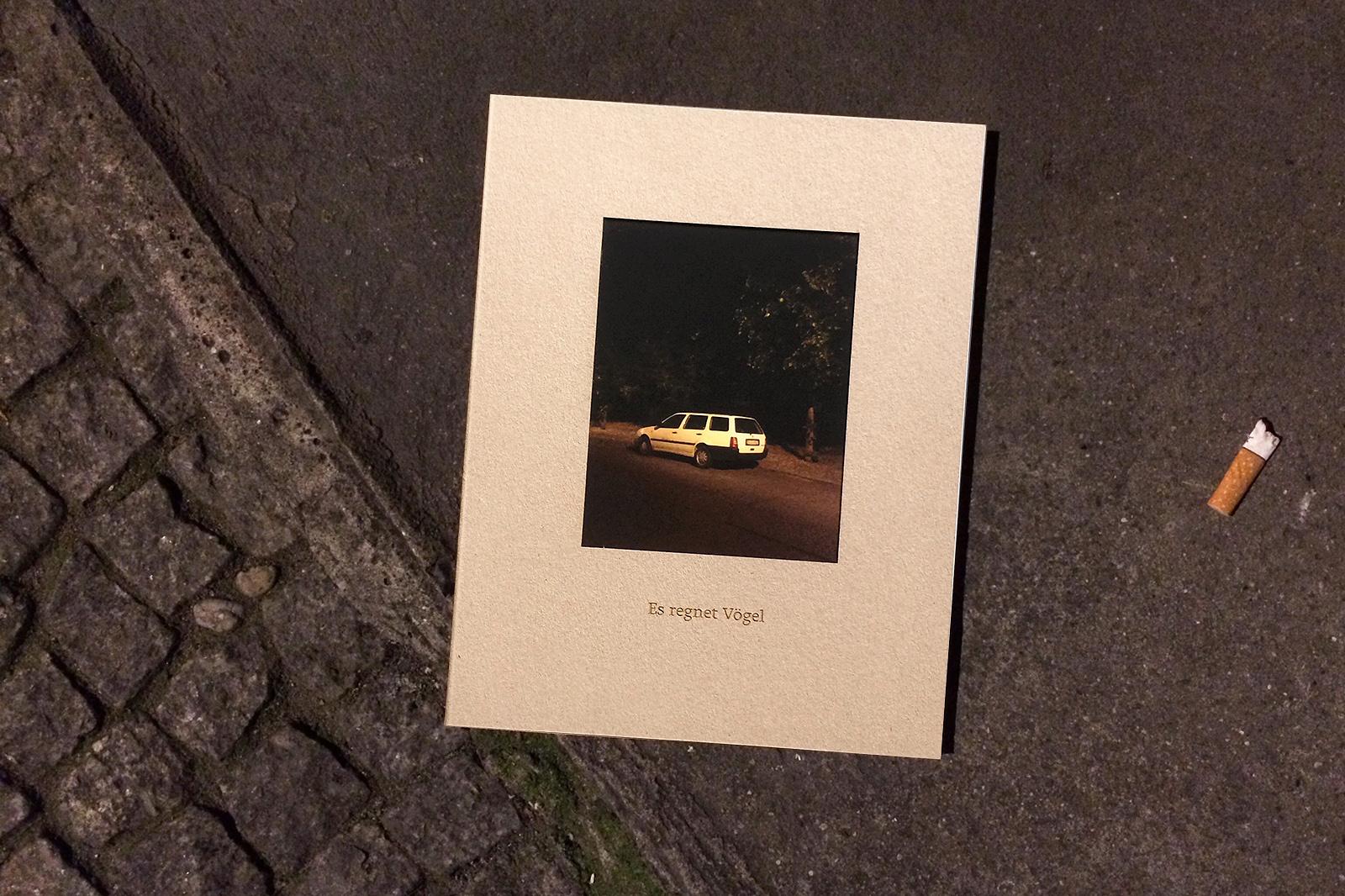 Es regnet Voegel – Stephanie Neumann
